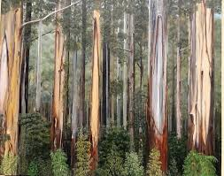 The Dandenongs by Nell Mcgregor