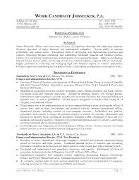 cfo resume sample word ceo cfo executive resume chief operations cfo resume sample word