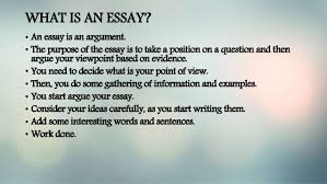 writing essay basics what is an