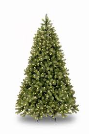 5ft Pre-lit Bayberry Spruce Feel-Real Artificial Christmas Tree