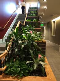 interior landscaping office. Beautiful Cascading Planter Boxes For Your Interior Landscapes. Landscaping Office U