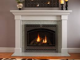 gas fireplace traditional closed hearth built in slimline series