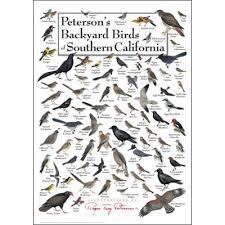 Bird Identification Charts