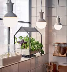 indoor apartment gardening. Delighful Apartment IKEA Is Introducing Hydroponic Indoor Gardening Kits For The Urban Dweller Inside Indoor Apartment Gardening