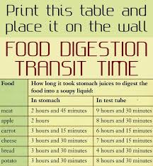 Print This Table And Place It On The Wall Food Digestion