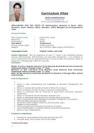 Resume Pattern For Job Application Cv Format Example Of To How Make