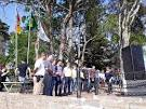imagem de Coqueiros do Sul Rio Grande do Sul n-10