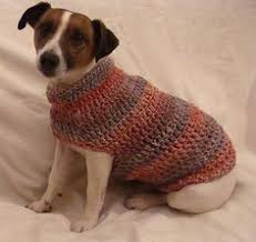 Free Crochet Dog Sweater Patterns Extraordinary Elegant Free Crochet Dog Sweater Patterns For Small Dogs Keep Your
