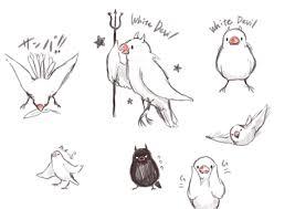 鳥ちゃん専門でイラストお描きします 愛くるしいモフモフの鳥イラスト