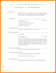 Cv Template Free Doc Luxus Free Resume Template Awesome Resume 52