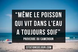 Proverbe En Provenance Du Camerounles Meilleures Citations Du Web