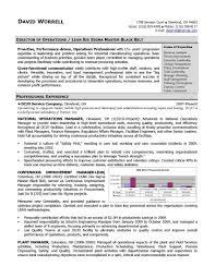 rn case management resume samples cipanewsletter rn case manager resume ango digimerge net