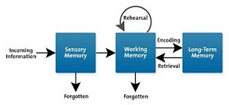 Long Term Memory Chart Cognitive Load Theory Learning Skills From Mindtools Com