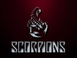 1024x768 images for 3d scorpion wallpaper