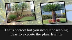 Tree landscaping ideas Maple Palm Tree Landscaping Ideas Youtube Palm Tree Landscaping Ideas Youtube