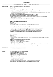 Resume For Cashier Job Head Cashier Resume Samples Velvet Jobs 63