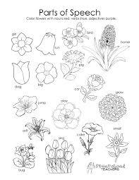aHR0cDovL2kwLndwLmNvbS93d3cubGlzdGNvbG9yaW5nLmNvbS93cC1jb250ZW50L3VwbG9hZHMvMjAxNi8xMS9mcmVlLXBhcnRzLW9mLWEtZmxvd2VyLWNvbG9yaW5nLXBhZ2UtcGFydHMtb2YtYS1mbG93ZXItY29sb3JpbmctcGFnZS1wYXJ0cy1vZi1hLXBsYW50LWNvbG9yaW5nLXBhZ2UtcGFydHMtb2YtYS1wbGFudC1jZWxsLWNvbG9yaW5nLXNoZWV0LWZyZWUtcGFydHMtb2YtYS1wbGFudC1jb2xvcmluZy1wYWdlLXBhcnRzLW9mLWEuanBnP3F1YWxpdHk9ODAmc3RyaXA9YWxs flower anatomy coloring pages on structure of flower worksheet
