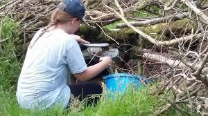 zookeeper cleaning.  Zookeeper Exmoor Zoo Zoo Keeper Experience  Cleaning To Zookeeper Cleaning A
