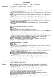 Sample Security Manager Resume Information Security Manager Resume Samples Velvet Jobs 11