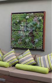 i love this beautiful living art it s framed succulents and there area step by step detailed instruction here my next diy  on live succulent wall art with make a living succulent picture pinterest detail gardens and