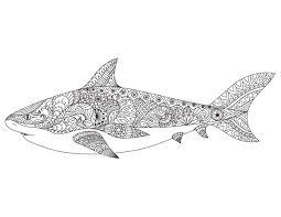 Dessin Pour Adulte Antistress Requin Imprimer Requins Dessin