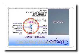At Fake buy Shop Id Student Our Diploma Card Online Doctor Discount Hn0wqrEHv