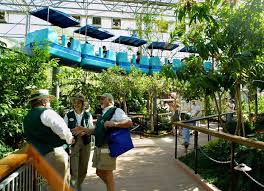 the sky trail ride winds through the roof of the monarch garden saay may 11