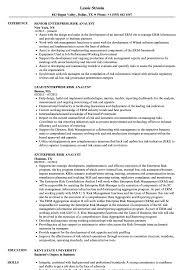 Enterprise Risk Analyst Resume Samples Velvet Jobs