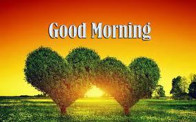 Good Morning Heart Shape Tree High ...