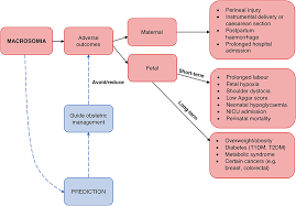 Frontiers Biomarkers For Macrosomia Prediction In