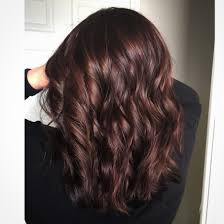 Light Cherry Brown Hair Pin By Natalie Goff On Hair Colors Styles Mocha Hair Hair