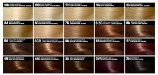 Warm Brown Hair Color Chart Light Brown Hair Color Chart And So A Run Down On The