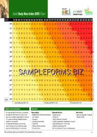 Bmi Chart Pdf Adult Body Mass Index Bmi Chart Pdf Free 2 Pages