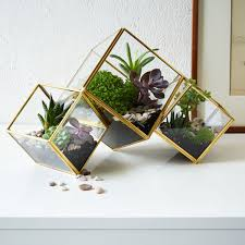 terrarium furniture. cube terrarium furniture