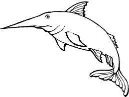 Disegni Di Animali Marini Da Colorare Scuolissimacom