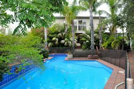 ... backyard pool design idea with palm trees also blue glass tiles ...