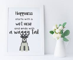 miniature schnauzer wall art gift happiness starts with a wet nose home decor print dog lover printable grey schnauzer gift schnauzer art