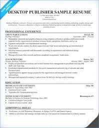 Resume Overview Examples Resume Example
