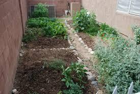 Small Picture Amazing Arizona Vegetable Garden Design Ideas Modern Interior