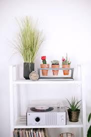 Interior Design: Scandinavian Indoor Plants In The Kitchen - Garden Decor