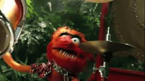 animal muppet drums gif. Delighful Gif Drumming GIF  TheMuppets Animal Drum GIFs For Muppet Drums Gif R