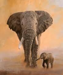 elephant painting african elephants by david stribbling