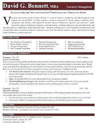 Executive Resume Template Word Inspiration Hybrid Resume Template Word Hybrid Resume Templates Free Template