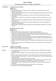 Sales Director Resume Examples 218 Densatilorg