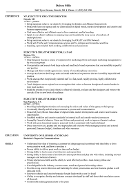 Director Resume Sample Executive Creative Director Resume Samples Velvet Jobs 50