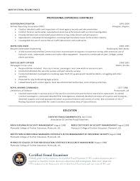 Top Resume Writing Services Amazing 5119 It Resume Writer Certified Resume Writer It Resume Writing Top