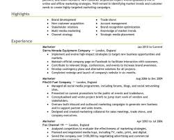 Resume Professional Writers Reviews Laudable Professional Resume Writers Seattle Tags Best 93