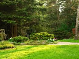 backyard gardens wallpapers top free