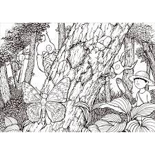 じゅえき太郎の昆虫採集ぬりえ じゅえき太郎 Hmvbooks Online
