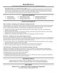 Key Account Manager Job Description Example Template Cv Car Sales